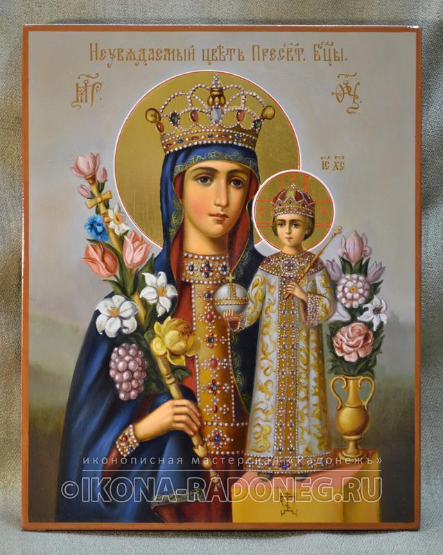Икона Богородицы-Неувядаемый Цвет